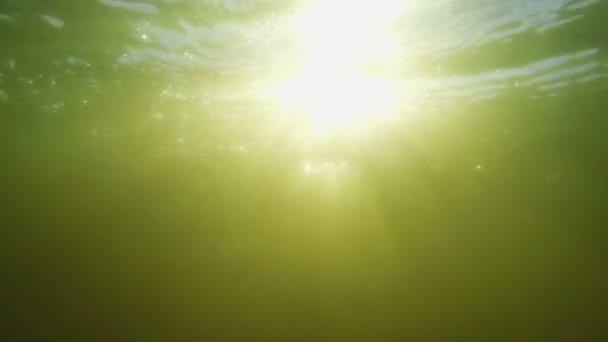 Sonnenstrahlen unter Wasser