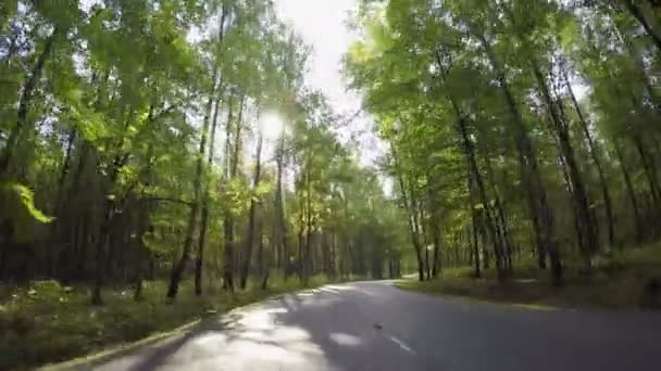 jízdy přes podzimní lesní cesta