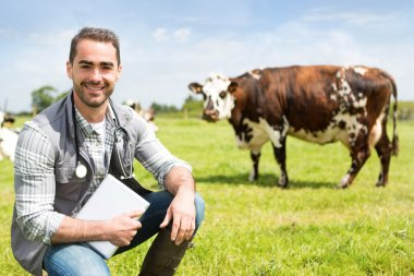 Portrait of a Young attractive veterinary in a pasture with cows