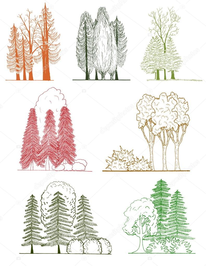 A set of tree silhouettes , for architectural or landscape design