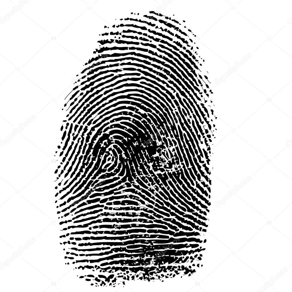 vector illustration of fingerprint stock vector jelen80 73860069 rh depositphotos com fingerprinting victorville fingerprint vector art free clean