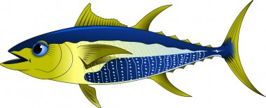 Blue tuna with yellow fins