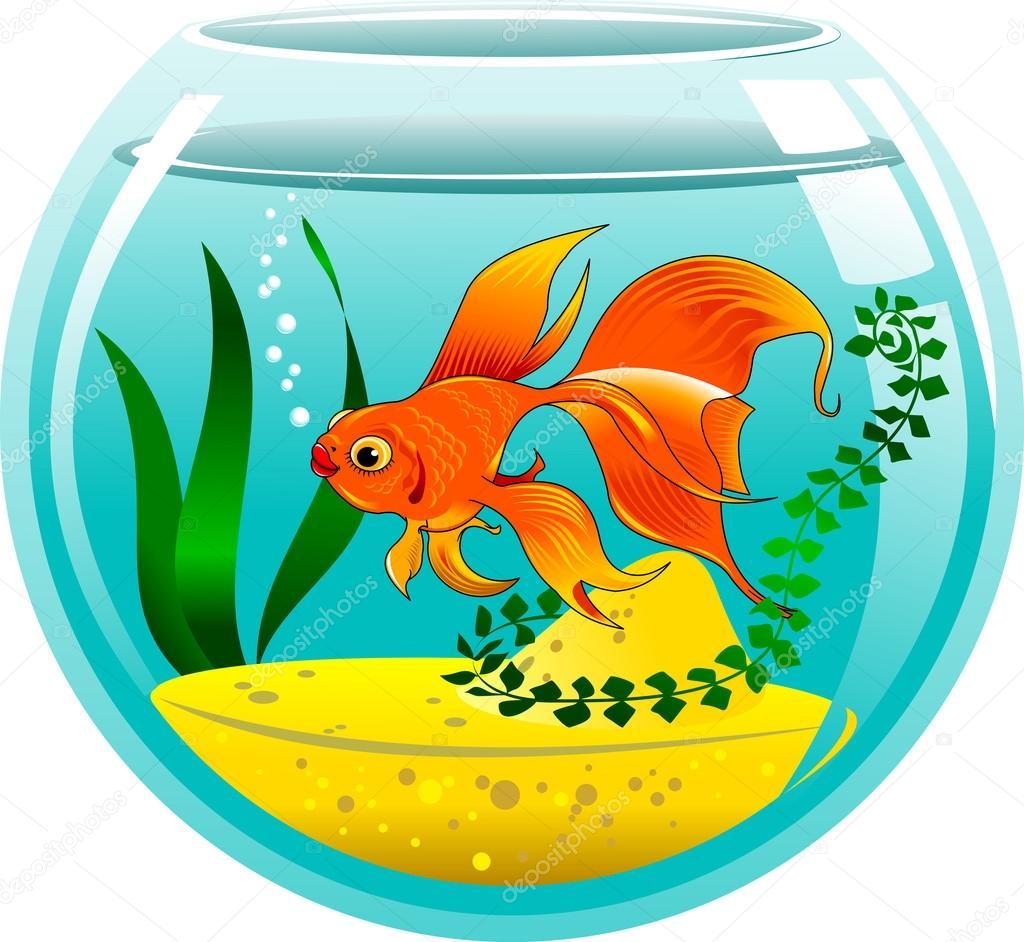 Золотая рыбка в аквариуме — Векторное изображение ...