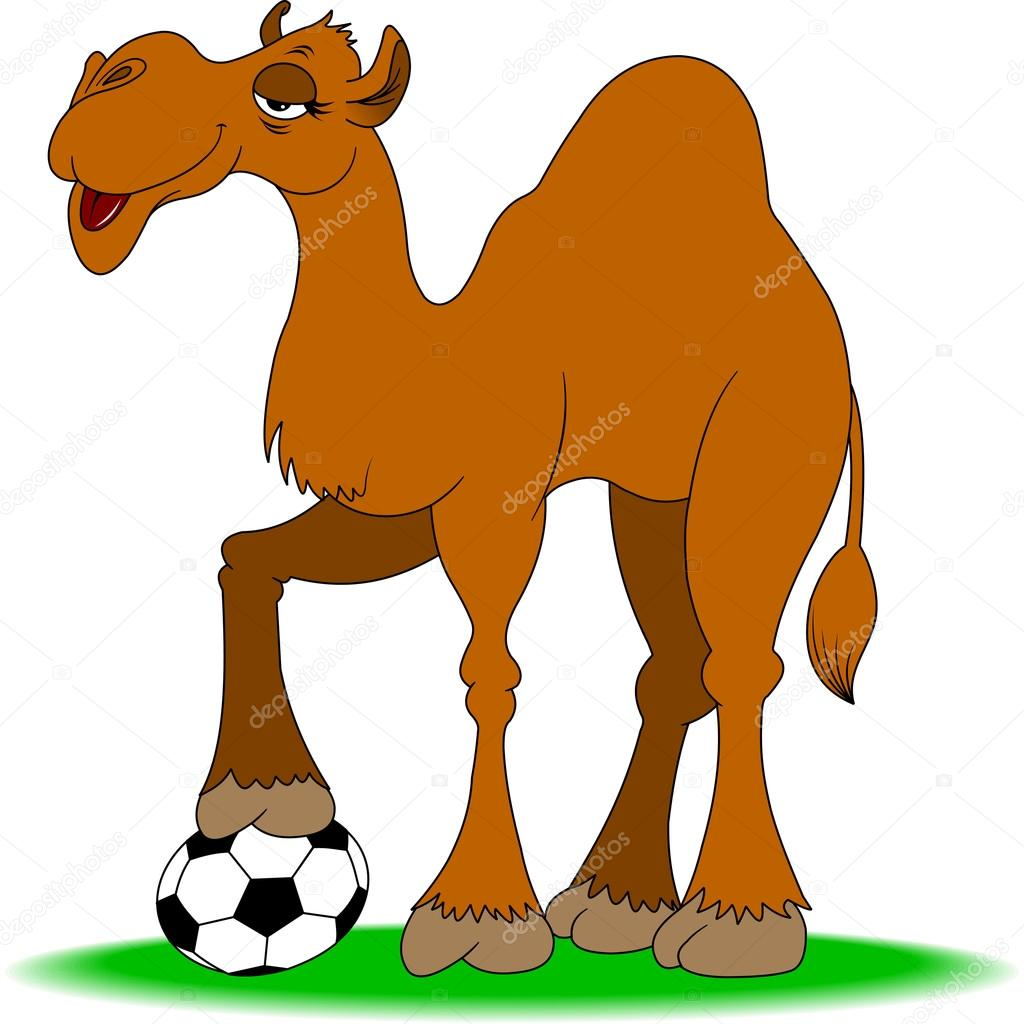 camel plays football u2014 stock vector sababa66 76279633