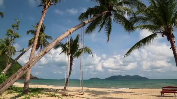 moře a palmy na pláži