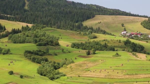 Krásné zelené a žluté hory a domy