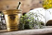Fotografie Fresh medicinal herbs