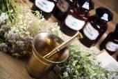 čerstvé léčivé byliny