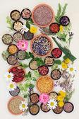 Léčivé byliny a květiny