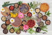 Fotografie Medicinal Herbs and Flowers
