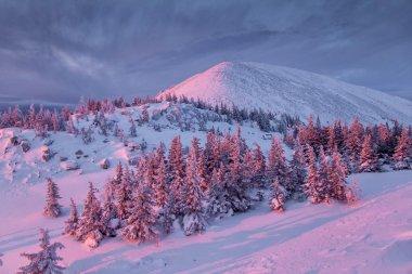 "Картина, постер, плакат, фотообои ""зимняя гора на рассвете постеры"", артикул 83798554"