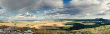 Rural Landscape of Green Fields in Valley in Bashkortostan, Russ