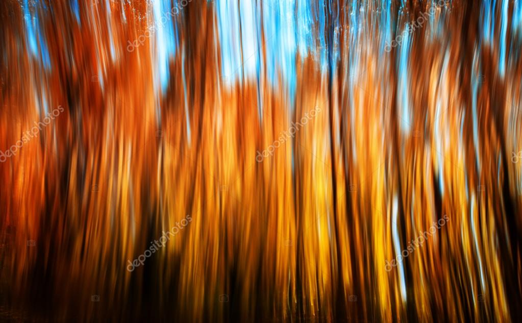 Motion blur of trees in an autumn forest