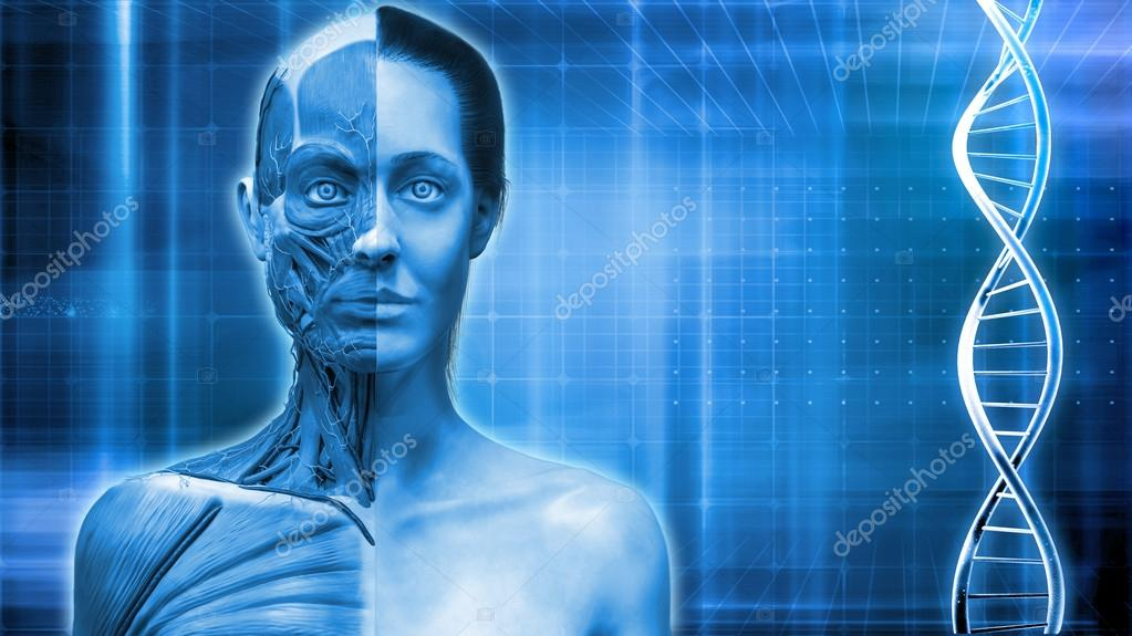 Blue Medical Background With Human Anatomy Of Female Model And Dna