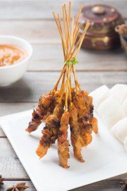 Delicious malaysian satay
