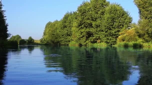 Erdő folyót