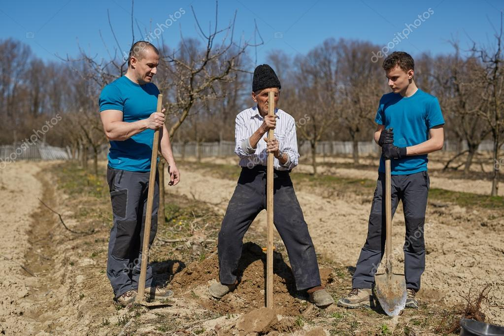 Three generations family planting a tree together