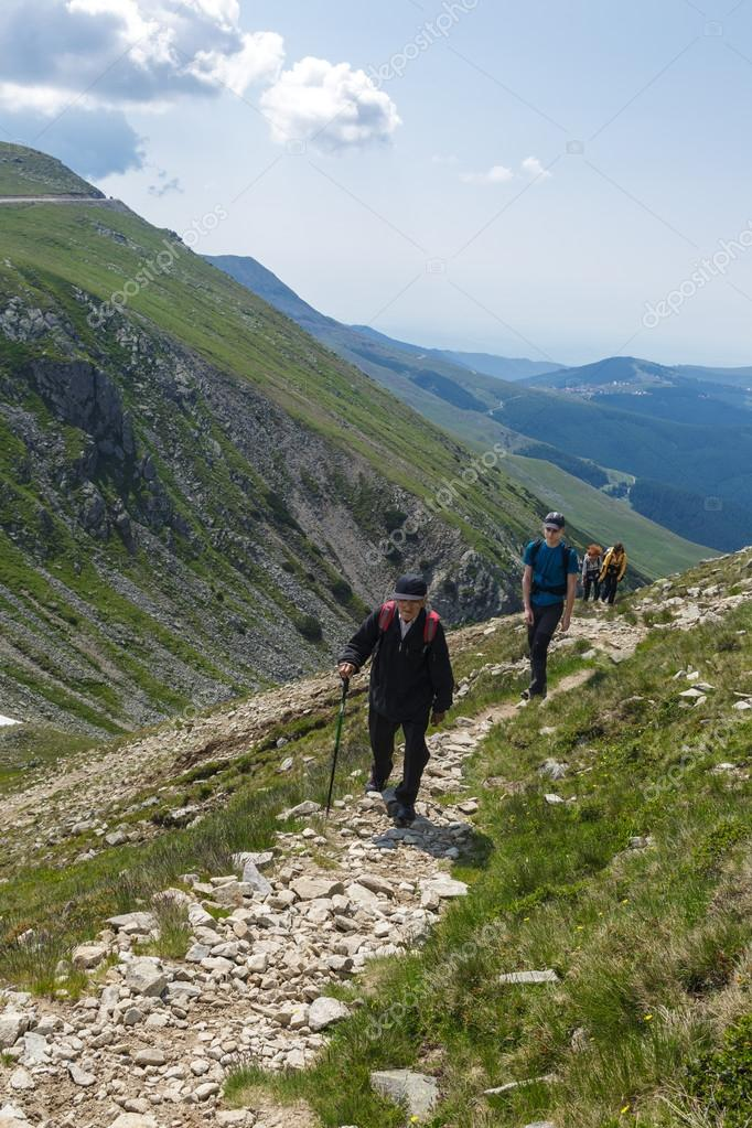 hikers walking on a trail