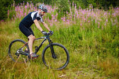 cyklista na odolné trasy
