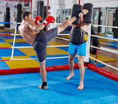 Photo fighters in  sparring match
