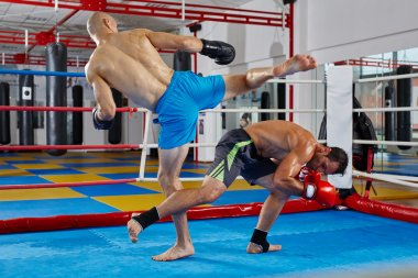 fighters in  sparring match