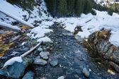 Fotografie Gebirgsfluss auf Winterzeit