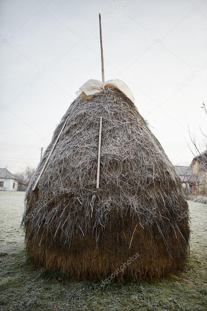One big haystack covered with frost