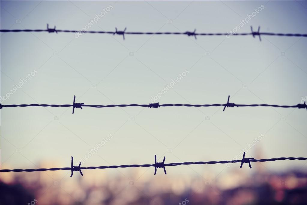 Freedom concept: barbed wire closeup vintage blur background — Stock ...