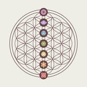 Fotografie Chakra-Symbolen über heilige Geometrie Gestaltung