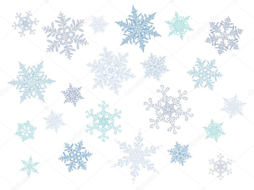 Vector Copo De Nieve: Cristal Frío Degradado Los Copos De Nieve