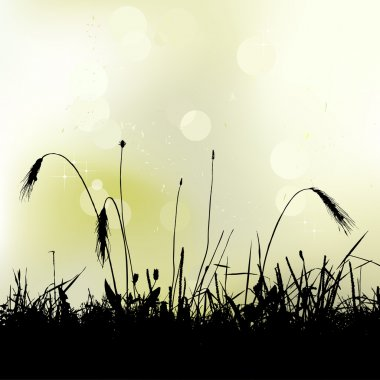 Meadow weeds silhouettes
