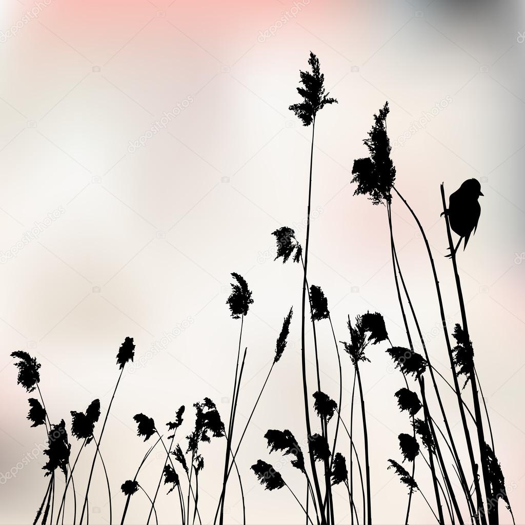 A small bird is sitting on reed - vector illustration