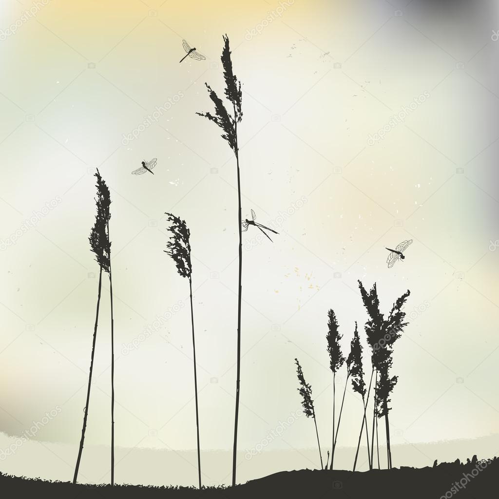 Dragonflies in flight - vector illustration