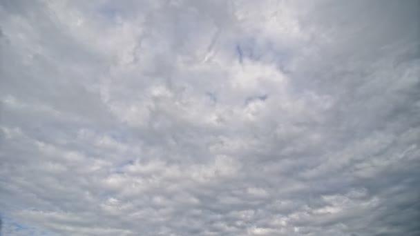 The cumulonimbus clouds