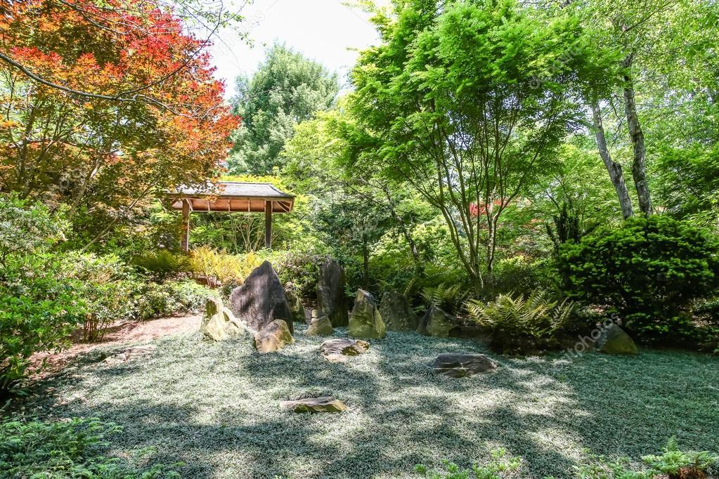 Bodendecker In Japanischer Garten Stockfoto Dbvirago 79341302
