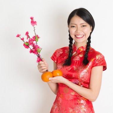 Portrait of Asian Chinese girl hands holding tangerine orange and plum blossom, in traditional red qipao standing on plain background. stock vector