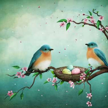 blue birds and eggs in nest