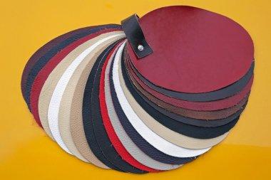 Leather Color Palette