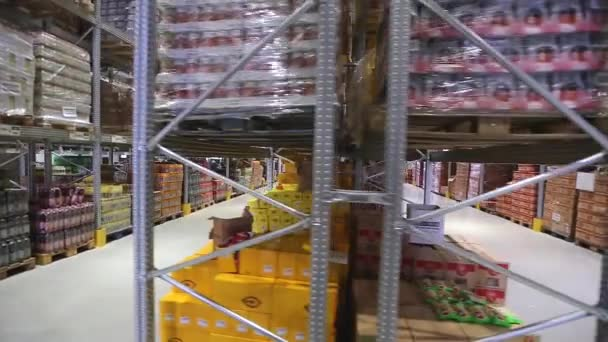 Warehouse From Moving Forklift