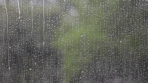 Deštivý den dešťové kapky