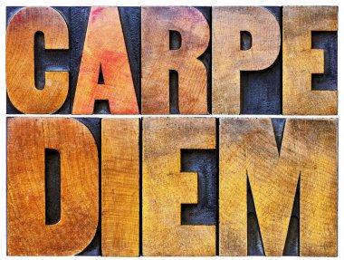 Carpe Diem in letterpress wood type