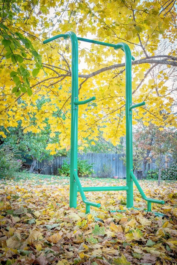 Hinterhof Fitness Konzept   Outdoor Fitness Turm Für Eine Vielzahl Von  Übungen Einschließlich Pull Ups, Push Ups, Sit Ups, Klimmzug, Eine Herbst  Landschaft ...