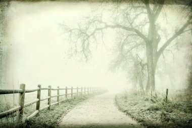 Nostalgic autumn scene, foggy park trail - landscape with a grunge texture effect stock vector