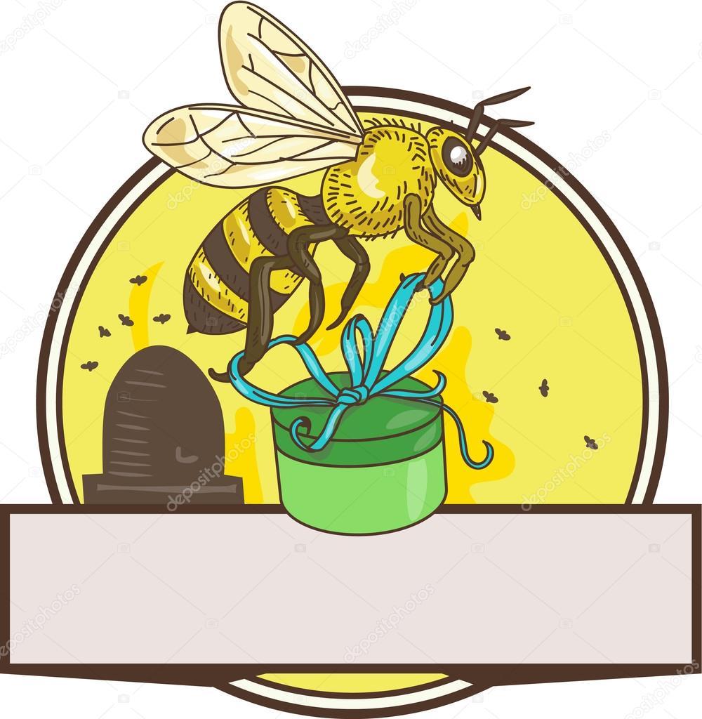 Biene Mit Geschenk Box Skep Kreis Zeichnen Stockvektor