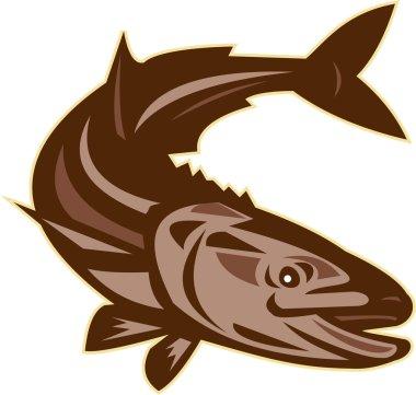 Cobia Fish Diving Down Retro