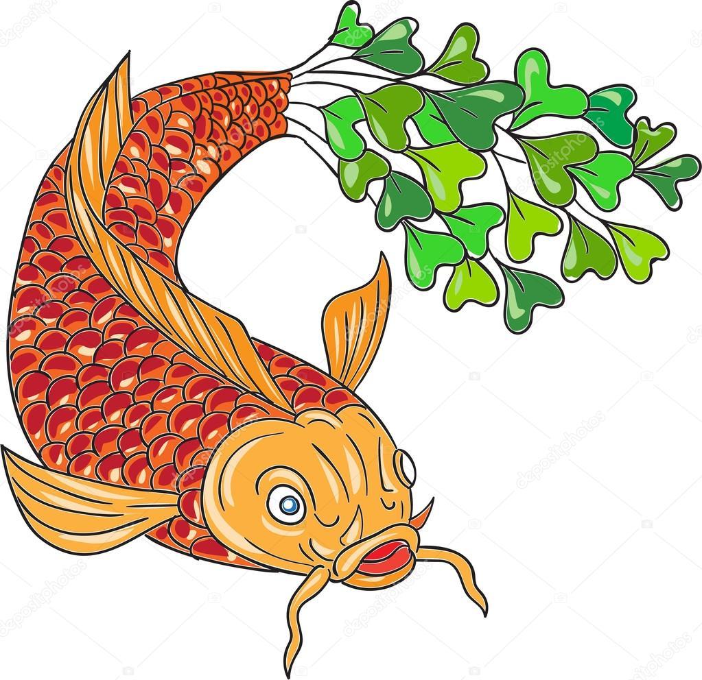 koi nishikigoi carpa pez cola microgreen dibujo u vector de stock