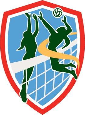 Volleyball Player Spiking Ball Blocking Shield