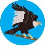 Fotografia Il Condor della California che si appollaia ramo cerchio retrò