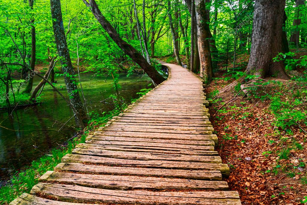Фотообои Boardwalk in the park Plitvice lakes