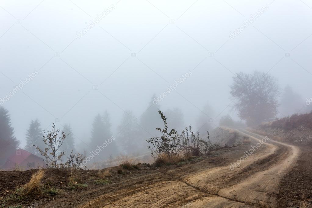 Foggy morning in Transylvania
